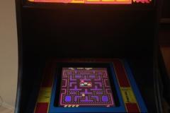 Ms. Pac-Man Multi